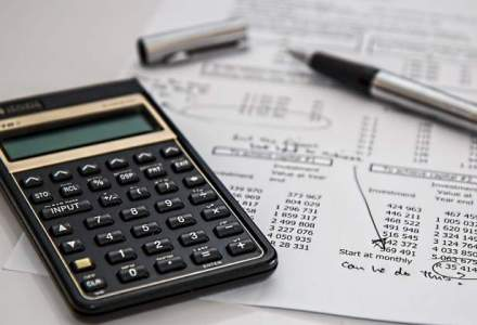 Consultant fiscal: Microintreprinderea, vehicul perfect pentru a evita plata taxelor