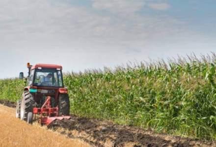 Exporturile de produse agroalimentare ale Romaniei au depasit 5 MLD. euro anul trecut