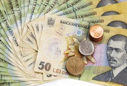 Guvernul discuta un proiect privind conversia creditelor, cu discount 15% si garantii de stat
