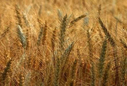 Care sunt pasii obtinerii fondurilor europene pentru utilaje agricole