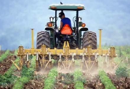 Coface: Se amplifica riscul de insolventa in sectorul agricol. Investitiile de retehnologizare sunt vitale