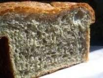 Consumul oficial de paine a...