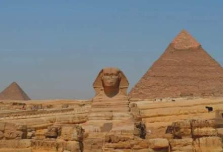 Egiptul a cumparat 60.000 de tone de grau din Romania