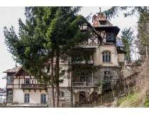 O vila din Sinaia in care a...