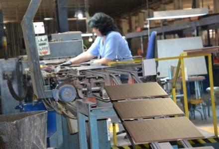 Moda verde ajunge si in fabrici: Sanex pregateste investitii de peste 10 mil. euro. Ce asteptari au de la piata?