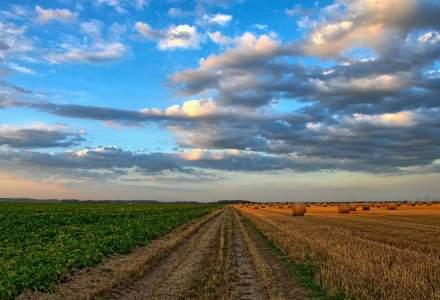 Fonduri europene 2015. Solutia pentru a obtine bani mai usor in agricultura