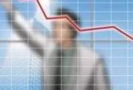 Sibex mizeaza in 2010 pe un profit brut de 1,1 mil. lei, la venituri in crestere cu 26%
