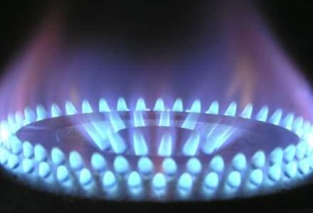 Bulgaria ar putea ieftini gazele cu 7%