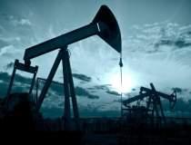 Gazprom si OMV vor colabora...
