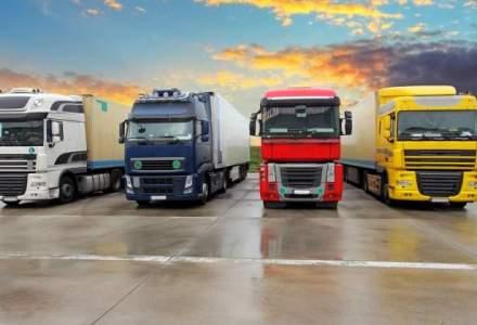 Profiturile marilor companii de transport rutier din Romania