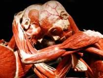 """Expozitia """"Our Body:..."""