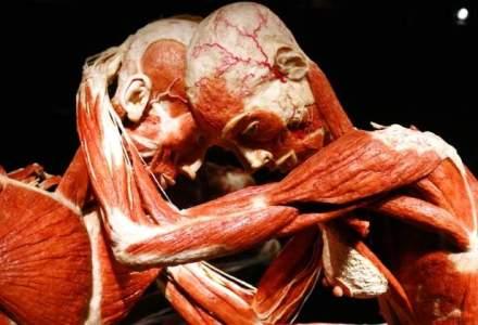 "Expozitia ""Our Body: Universul Interior"", cu corpuri umane plastifiate, in premiera la Cluj-Napoca"