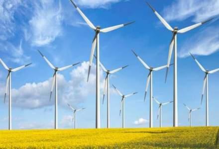 Companiile din domeniul energiei regenerabile vor sistarea acreditarilor pentru centrale noi