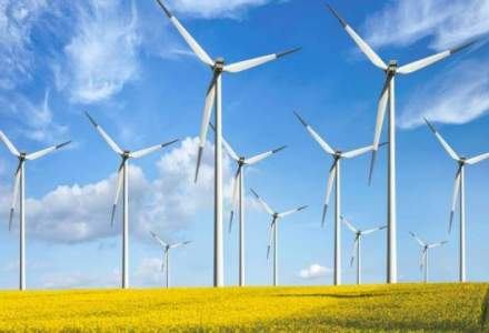 Monsson Group va demonta turbinele unui parc eolian din judetul Constanta