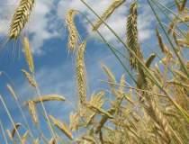 Comisia de agricultura:...