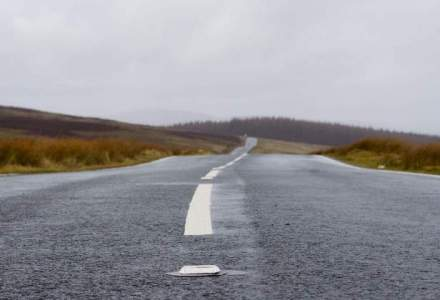 Liliecii, castorii si mortii saboteaza constructia Autostrazii Lugoj-Deva