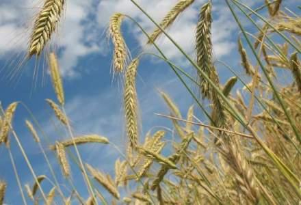 Constantin vrea un acord politic pentru refacerea irigatiilor, Sapunaru cere unul pentru agricultura