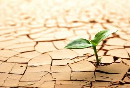 Victor Ponta: Mi-e teama ca seceta si problemele din agricultura vor afecta cresterea economica