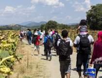400.000 de refugiati sunt...