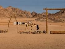 Egiptenii au ucis 12 turisti,...