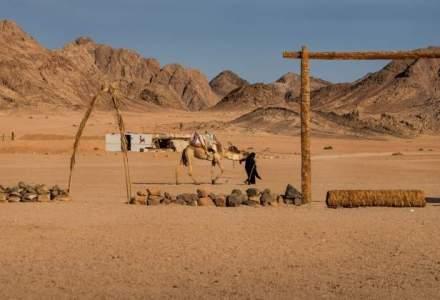 Egiptenii au ucis 12 turisti, pentru ca au crezut ca sunt teroristi