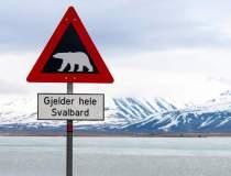 Norvegia ar putea sa trimita...
