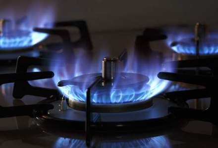 Niculae Havrilet, ANRE: Pretul gazelor se va reduce cu pana la 10% la 1 iulie 2016