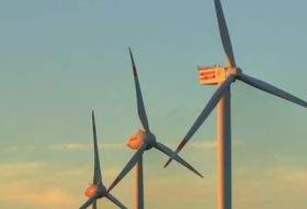 Turbina eoliana in propria curte: Costa cat o masina, dar da energie 30 de ani