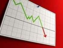Coface: Economia Romaniei...