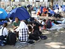 Peste 217.000 de imigranti au...