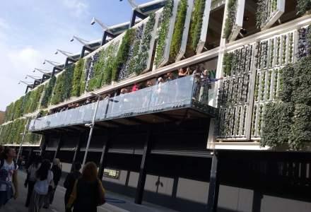 Extravaganta la Expo Milano: de la conserve de insecte si supermarketul viitorului, la constructii spectaculoase