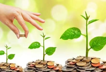 Ce comisioane au cele mai performante 10 fonduri de investitii romanesti