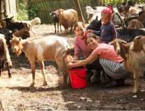 Scoala Village Life aduce...