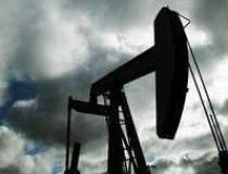 Dependenta de petrolul OPEC...