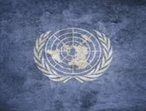 ONU cere 20 mld. dolari de la...