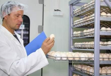 Peste 6.600 de oua si alte patru tone de alimente, retrase de pe piata inainte de Craciun