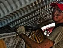 Germania: Numarul angajatilor...