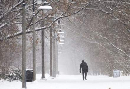 Primaria Capitalei va amenda firmele care nu au curatat zapada de pe trotuare