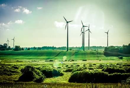 Producatorii de energie verde spun ca au pierdut peste 2 miliarde de lei in 2014 din cauza autoritatilor