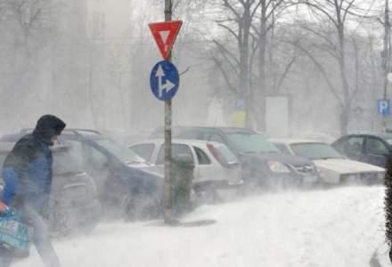ISU Bucuresti: 191 de copaci si stalpi de electricitate cazuti, peste 130 de masini avariate