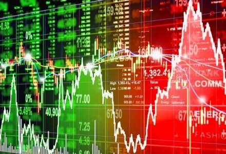 Topul actiunilor care au rezistat cel mai bine tavalugului de pe burse din ianuarie