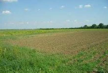 Ce terenuri se mai cauta in Bucuresti: Suprafete mici, in zonele Baneasa sau 1 Mai