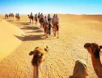 UE ar putea oferi Tunisiei un...