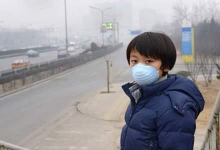 Milioane de decese premature, cauzate de poluarea aerului in 2013