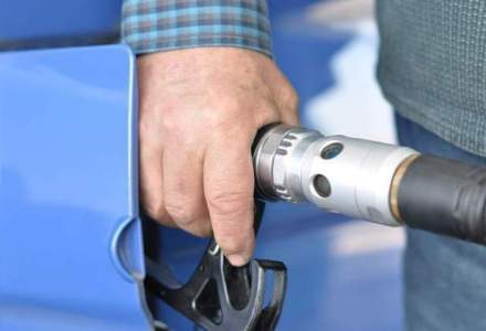 In absenta autostrazilor, retelele de benzinarii se extind timid