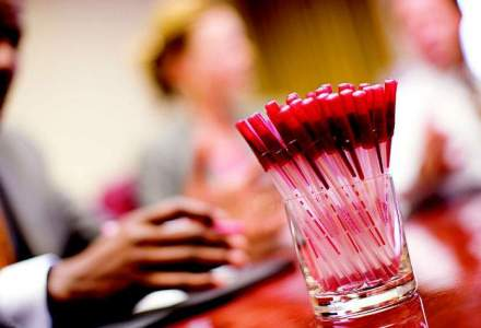 Angajari: Wizrom cauta 40 de consultanti