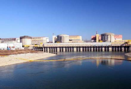 Lulache, Nuclearelectrica: Putem sa ne gestionam problemele. Am investit zeci de milioane euro in teste