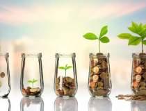 Erste Asset Management:...