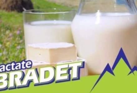 Patronul Lactate Bradet vrea sa atraga 10 mil. lei pe o platforma online de finantare