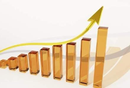 Serviciile de piata prestate intreprinderilor au avut o crestere a cifrei de afacere cu 5,5% in ianuarie, fata de luna similara din 2015